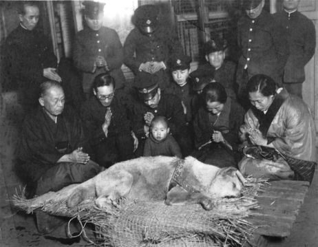 Hachiko's funeral: Photo provided by Shibuya Folk and Literary Shirane Memorial Museum