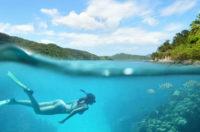 Rest In Peace Great Barrier Reef